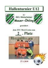 2. TSV Meisl Grein U12